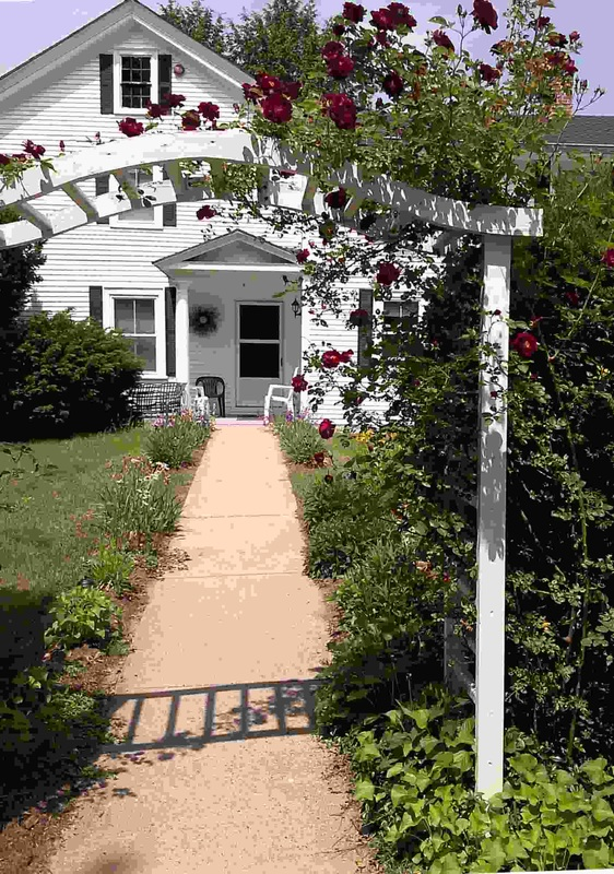 Walkway with roses